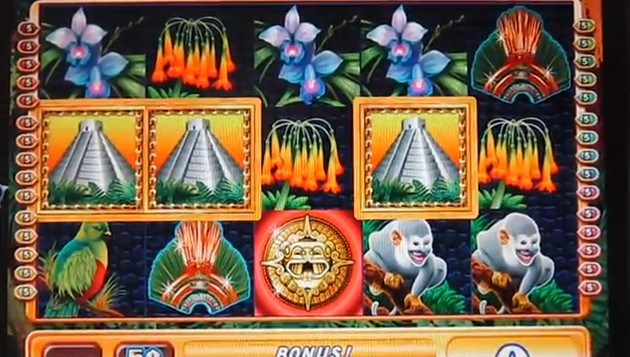 Jungle Wild WMS Online Slot for Real Money - RizkCasino