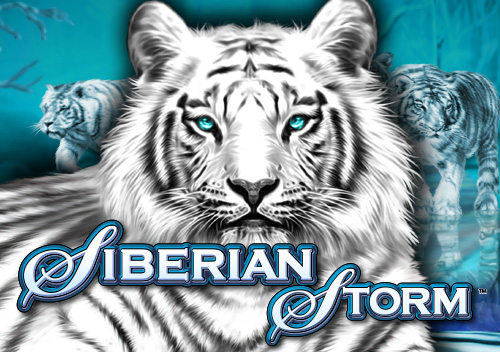 Siberian Storm™ Slot Machine Game to Play Free in IGTs Online Casinos