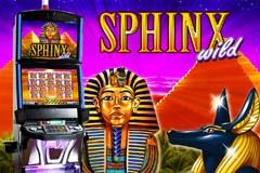 video slot free online spielo online